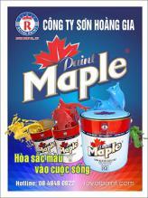 Sơn dầu cao cấp Maple